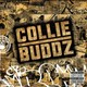 Collie Buddz's Blind to You