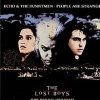 Echo The Bunnymen Cover Of The Doorss People Are Strange Whosampled
