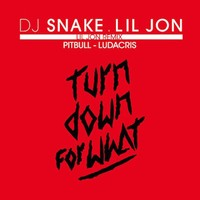 Dj Snake And Lil Jon Feat Pitbull And Ludacris S Turn Down For What Lil Jon Remix Whosampled