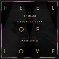 Tensnake And Jacques Lu Cont Feat Jamie Lidell S Feel Of