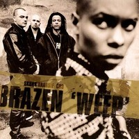 Brazen 'Weep' (Perfecto Mix)
