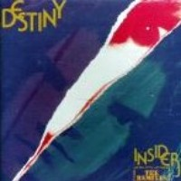 Destiny (The Wild Mix)